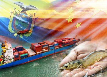 China levanta prohibición temporal de una exportadora de camarón de Ecuador