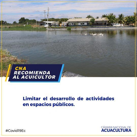 CNARECOMIENDA-08