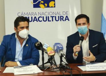 PRODUCCIÓN CAMARONERA EN EL ECUADOR SUFRE CONTRACCIÓN Y EXPORTACIONES SE REDUCEN EN JUNIO. PROYECCIONES DE LA CNA PARA EL RESTO DE 2020 NADA ALENTADORAS